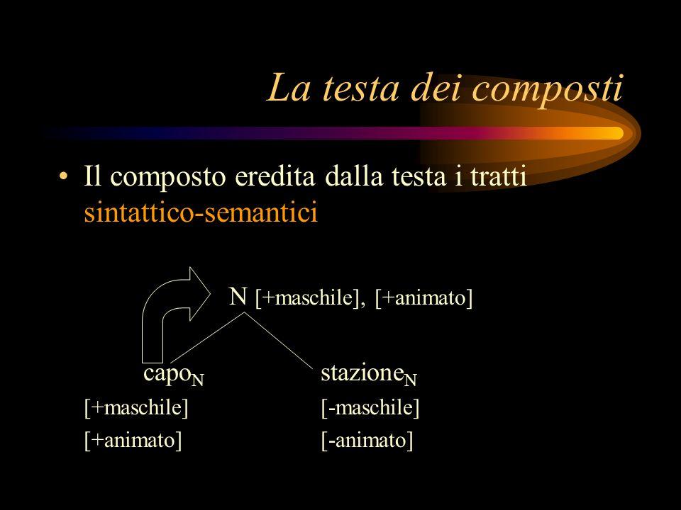 La testa dei composti Il composto eredita dalla testa i tratti sintattico-semantici. N [+maschile], [+animato]